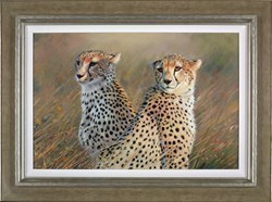 Cheetah Twins by Pip McGarry -  sized 30x20 inches. Available from Whitewall Galleries